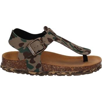 kengät Lapset Sandaalit ja avokkaat Bionatura 22B1001 Vihreä