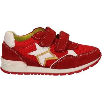 kengät Lapset Matalavartiset tennarit Melania ME2092D7E.F Punainen