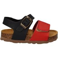 kengät Lapset Sandaalit ja avokkaat Bamboo BAM-218 Punainen