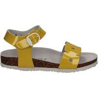 kengät Lapset Sandaalit ja avokkaat Bionatura 22B1024 Keltainen