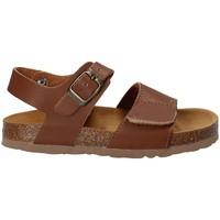 kengät Lapset Sandaalit ja avokkaat Bamboo BAM-218 Ruskea