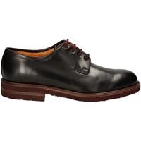 kengät Miehet Derby-kengät Rogers 371-69 Musta