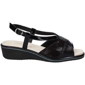 kengät Naiset Sandaalit ja avokkaat Susimoda 270414-01 Musta