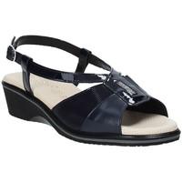 kengät Naiset Sandaalit ja avokkaat Susimoda 270414-01 Sininen