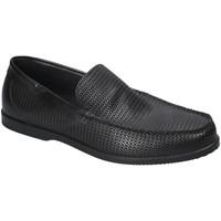 kengät Miehet Mokkasiinit IgI&CO 3109300 Musta