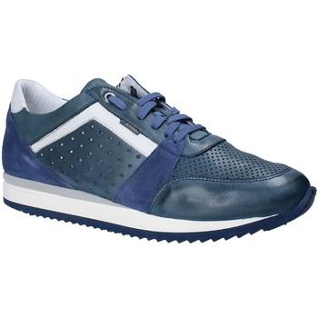 kengät Miehet Matalavartiset tennarit Exton 558 Sininen