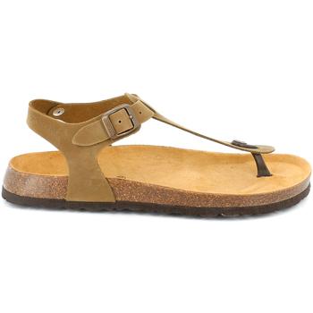 kengät Miehet Sandaalit ja avokkaat Grunland SB3221 Ruskea