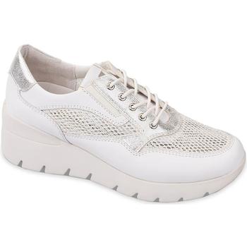 kengät Naiset Matalavartiset tennarit Valleverde 18252 Valkoinen