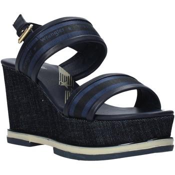 kengät Naiset Sandaalit ja avokkaat Wrangler WL01553A Sininen