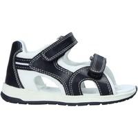 kengät Lapset Sandaalit ja avokkaat Chicco 01063481000000 Musta