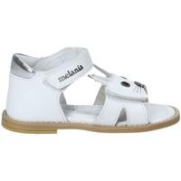 kengät Tytöt Sandaalit ja avokkaat Melania ME8002B8E.A Valkoinen
