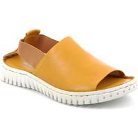 kengät Naiset Sandaalit ja avokkaat Grunland SA2538 Keltainen