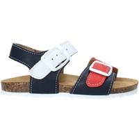 kengät Lapset Sandaalit ja avokkaat Bionatura LUCA IMB Sininen
