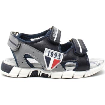kengät Lapset Sandaalit ja avokkaat U.s. Golf S19-SUK460 Sininen