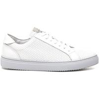 kengät Miehet Matalavartiset tennarit Stonefly 211289 Valkoinen