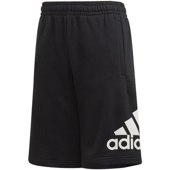 vaatteet Lapset Shortsit / Bermuda-shortsit adidas Originals FM6456 Musta