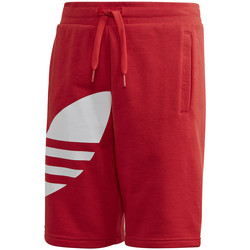 vaatteet Lapset Shortsit / Bermuda-shortsit adidas Originals FM5658 Punainen