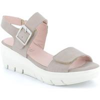 kengät Naiset Sandaalit ja avokkaat Grunland SA1881 Muut