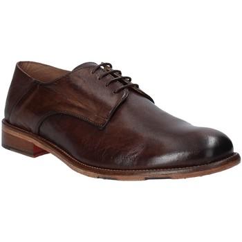 kengät Miehet Derby-kengät Exton 3101 Ruskea