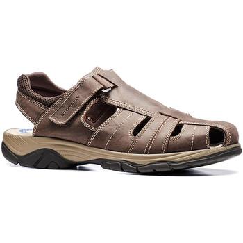 kengät Miehet Sandaalit ja avokkaat Stonefly 108693 Ruskea