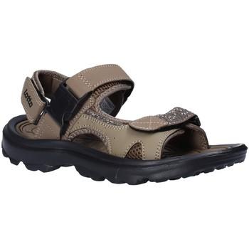kengät Miehet Sandaalit ja avokkaat Lotto T4769 Ruskea