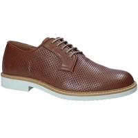 kengät Miehet Derby-kengät IgI&CO 1105122 Ruskea