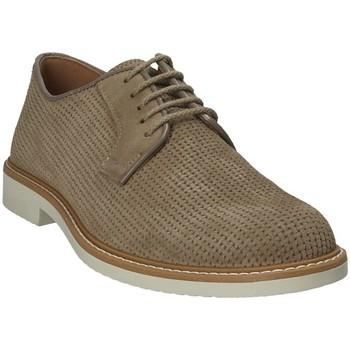 kengät Miehet Derby-kengät IgI&CO 1105166 Ruskea