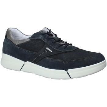 kengät Miehet Matalavartiset tennarit IgI&CO 1126 Sininen