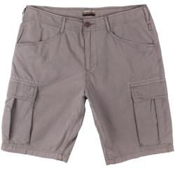 vaatteet Miehet Shortsit / Bermuda-shortsit Napapijri N0YHF6 Harmaa