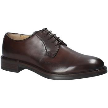 kengät Miehet Derby-kengät Rogers 1010_1 Ruskea