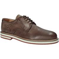 kengät Miehet Derby-kengät Exton 672 Ruskea