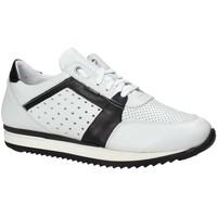 kengät Miehet Matalavartiset tennarit Exton 558 Valkoinen