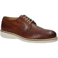 kengät Miehet Derby-kengät Exton 886 Ruskea