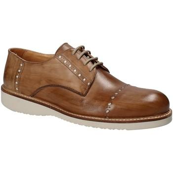 kengät Miehet Derby-kengät Exton 883 Ruskea