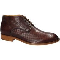 kengät Miehet Bootsit Exton 5355 Ruskea