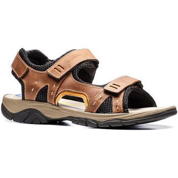kengät Miehet Sandaalit ja avokkaat Stonefly 108692 Ruskea