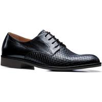 kengät Miehet Derby-kengät Stonefly 110766 Sininen