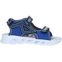 kengät Lapset Sandaalit ja avokkaat Bulls S19-SBL839 Sininen