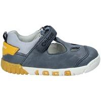kengät Lapset Sandaalit ja avokkaat Chicco 01059451 Harmaa