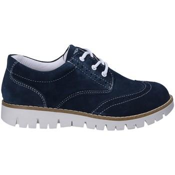kengät Pojat Derby-kengät Primigi 1369333 Sininen