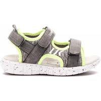 kengät Lapset Sandaalit ja avokkaat Lumberjack SB28206 002 M17 Harmaa