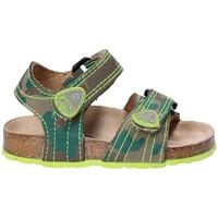 kengät Lapset Sandaalit ja avokkaat Asso 64205 Ruskea