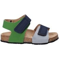 kengät Lapset Sandaalit ja avokkaat Asso 64204 Harmaa