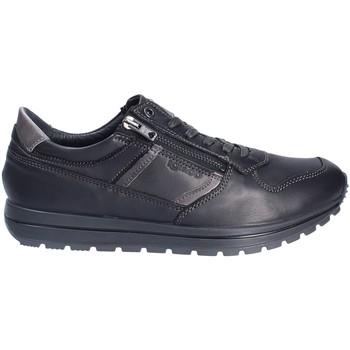 kengät Miehet Matalavartiset tennarit IgI&CO 2136400 Musta