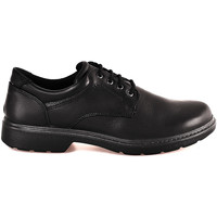 kengät Miehet Derby-kengät Enval 2223600 Musta