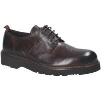 kengät Miehet Derby-kengät Exton 390 Ruskea