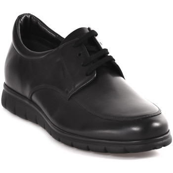 kengät Miehet Derby-kengät Soldini 20583 P Musta