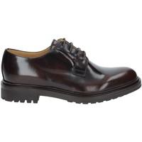 kengät Miehet Derby-kengät Rogers 122A Ruskea