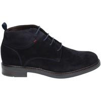 kengät Miehet Bootsit Rogers 2020 Sininen