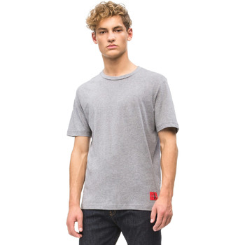 vaatteet Miehet Lyhythihainen t-paita Calvin Klein Jeans J30J309616 Harmaa